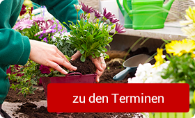 Termine und Events in unserem Gartencenter
